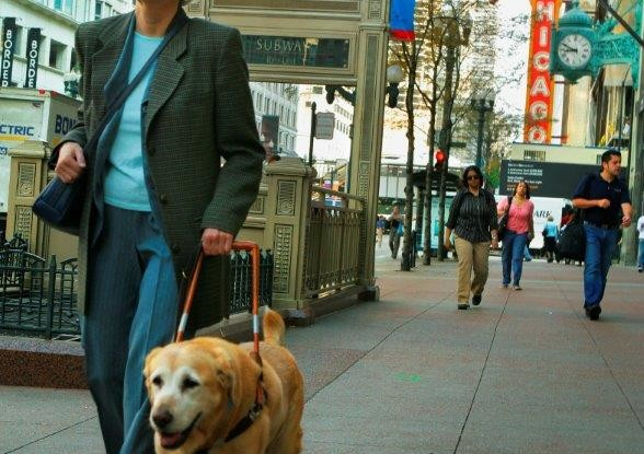 How Do Blind and Visually Impaired People Get Around?