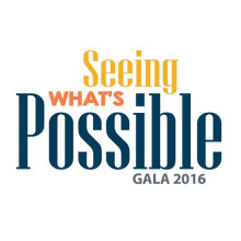 Pioneer Press Recap of the 2016 Chicago Lighthouse Gala image