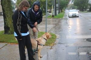 Saturday Seminar_Guide Dogs