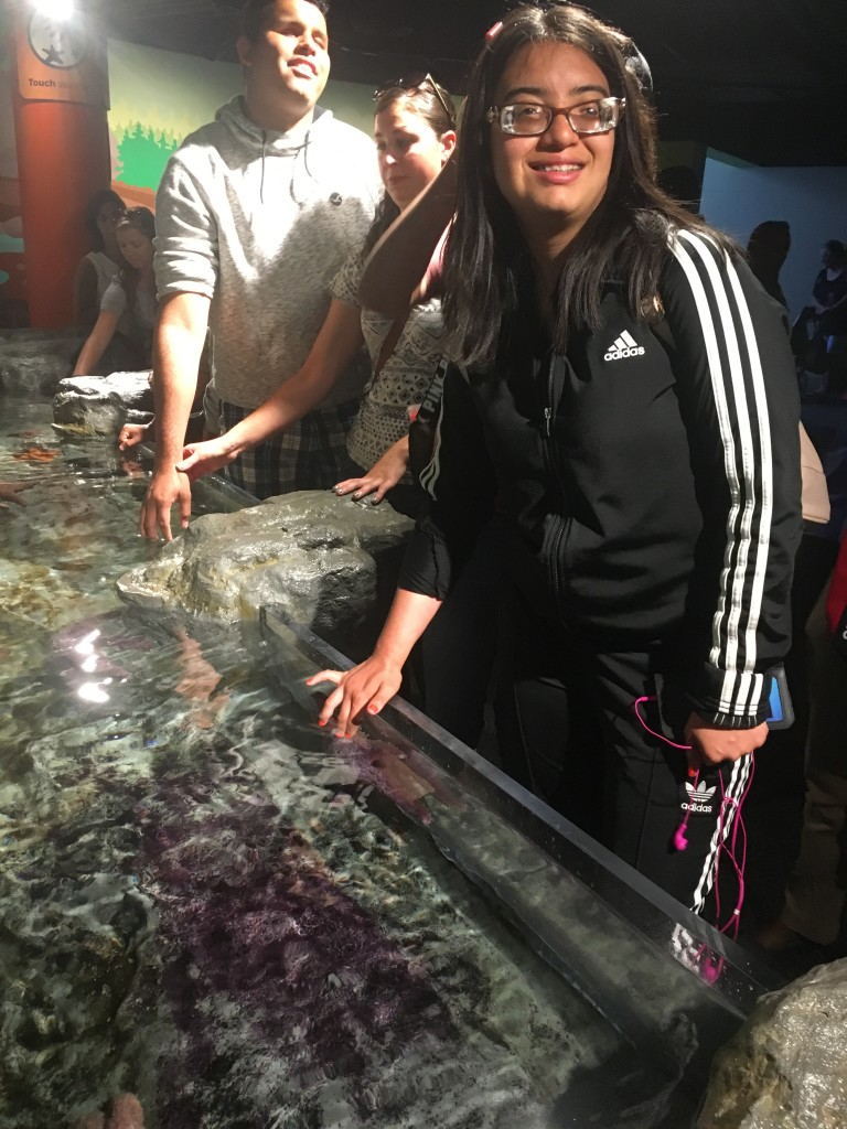 Youth who are blind or visually impaired take a touch tour of an exhibit at the Shedd Aquarium