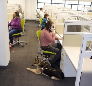 A group of 5 call center agents (all of whom are blind) schedule patient appointments thanks to fully accessible software by Epic.